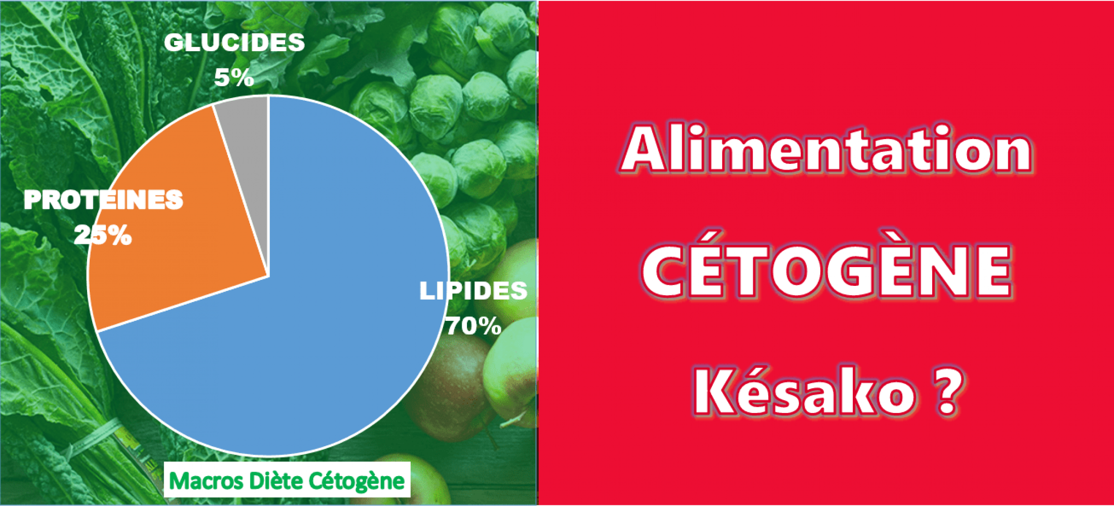 Qu'est-ce que l'alimentation cétogène (faible teneur en glucides) ?